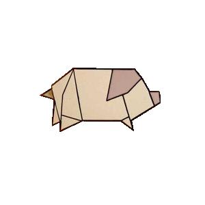 LR_pig
